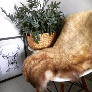woool-schapenvacht-licht-gemeleerd-beige-xl WOOOL Schapenvacht